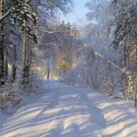 Ворота в зиму!!! :: Алексей. Бордовский