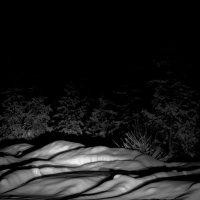 Зима в лесу :: Александр Лесик