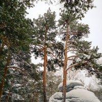 Валуны :: Сергей Журов