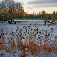 В зимнем парке :: Юрий