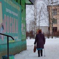 Жизнь на советскую пенсию :: Татьяна Копосова
