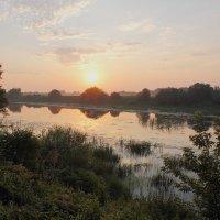 Влажным утром у реки 3 :: Юрий Морозов