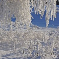 подол зимы :: alex kahovskiy
