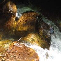 Палитра художницы-воды :: Наталия С-ва