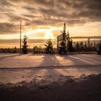 Солнце спряталось за елкой, почесала там иголки))) :: Григорий Храмов
