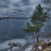 В суровом северном краю :: sergej-smv