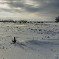 март :: павел бритшев