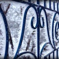 Волжские украшения зимы :: brewer Vladimir