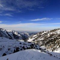 Первая очередь - станция ,,пересечение,, высота 2640 метров :: Ваше имя Эдуард Кир