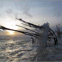 После шторма :: Николай Кувшинов
