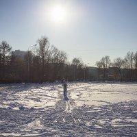 Прошлогодний снег :: Алексей Соминский
