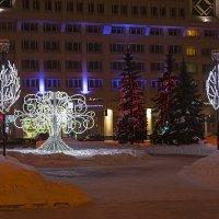 Светящиеся деревья. :: Валерий Молоток