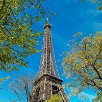 Увидеть Париж...и  захотеть вернуться :: Андрей
