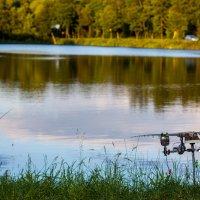 Рыбалка 2013 :: Александр Либрехт