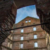 Развалины старой мельницы. :: Sergey Oslopov