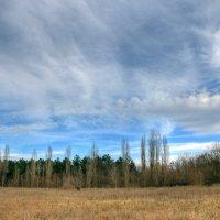 Осеннее небо :: Юрий Яловенко