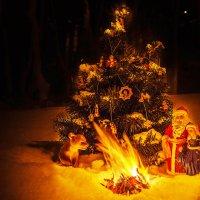 Новогодняя сказка :: Александр Неустроев