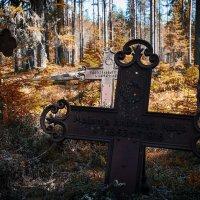 старое финское кладбище ( д. Хаутаваара ) :: Юрий ефимов