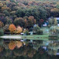 Ранняя осень :: Дмитрий .