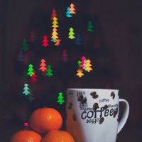 Новогоднее настроение.... :: Nikita Bykov