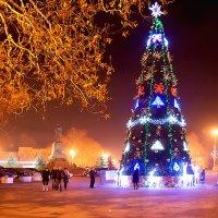 С Новым Годом! :: Алексей Петраш