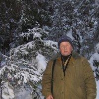 В зимнем лесу :: Виктор Куклин