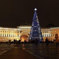 Новогодняя ёлка на Дворцовой площади. :: Михаил Лесин