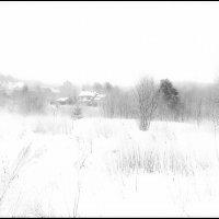 белая зима :: ник. петрович земцов