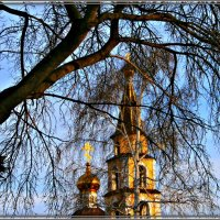 Весна :: Евгений Юрков