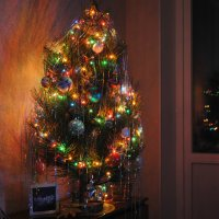 Дерево :: Kate Zimens