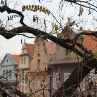 Градчаны, Прага :: Светлана Сироткина
