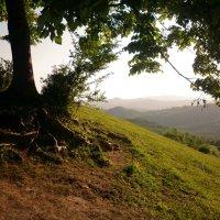 Абхазия :: Chou Cio