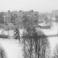 Зима из окна :: Andrew Morawski
