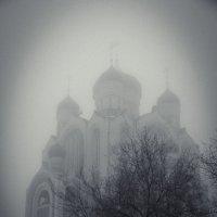 в тумане :: Александр Мартовецкий