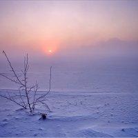 Мороз :: Юрий Клюшкин