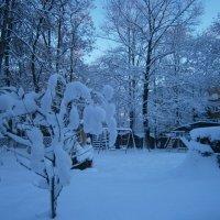 первый снег :: оксана ка
