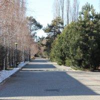 Зима и лето :: Cholpon Zhakypova