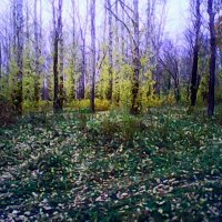 Осень :: Денис Геранькин