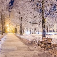 Зимний мороз :: Дмитрий Сальков