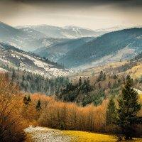 Закарпатье, в которое влюбилась,  где будет мой дом) :: Tanua Voitko