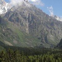 Ала-арчинское ущелье ( Кыргызстан) :: Екатерина Карлова