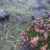Камень :: Данил Суров