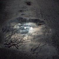 Місяць :: Виктория Голец