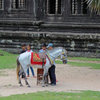 Камбоджа. Ребята и пони :: Владимир Шибинский