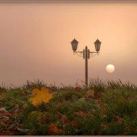 Туманным утром! :: Владимир Шошин