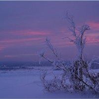 13 утро  2013 года! :: Владимир Шошин