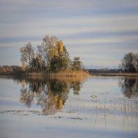 мой островок :: liudmila drake