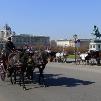 Viennese morning / Венское утро :: Ellada Kiryakulova