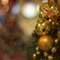 Новогоднее настроение :: Miha Шохин