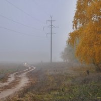 утро туманное :: Владимир Горбунов